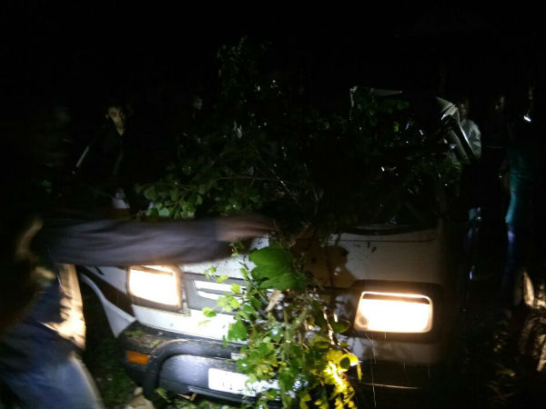 For heavy wind tree fell on the omini, two were injured