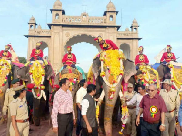 Elephants came from the Aranya Bhavan to the palace courtyard