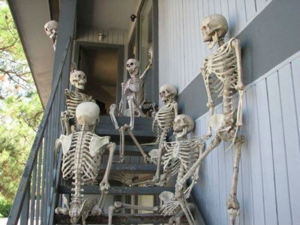 Funny skeleton photo posted by Ramya on Twitter
