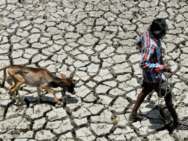 Karnataka Draught Txt Government Added 14 More Taluks To Its Drought Hit Taluk List