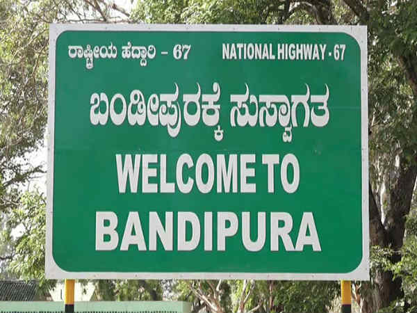 No new year celebration in Bandipur forest