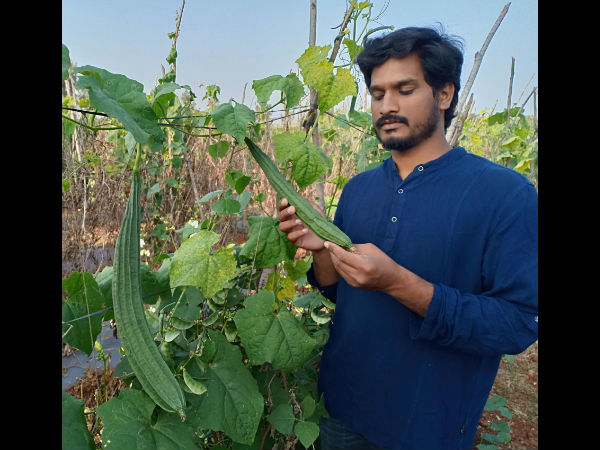 Here Is The Lessons From Youths Who Are Promoting Organic Farming