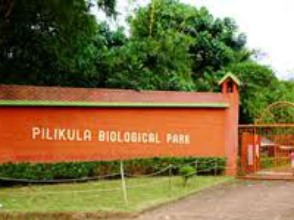 Buggis to take visitors in Pilikula Nisarghadhama