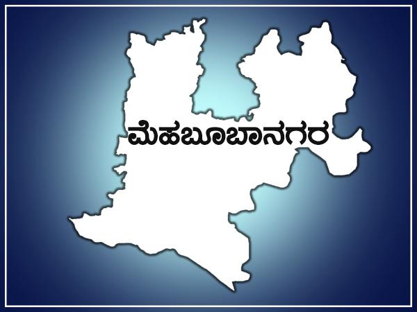 Lok Sabha Elections 2019 Mahbubnagar Ls Constituency