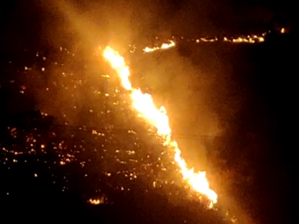 Fire in Bandipur again appeared