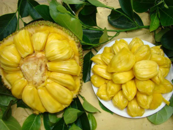Jack fruit demand is getting hike at day by day