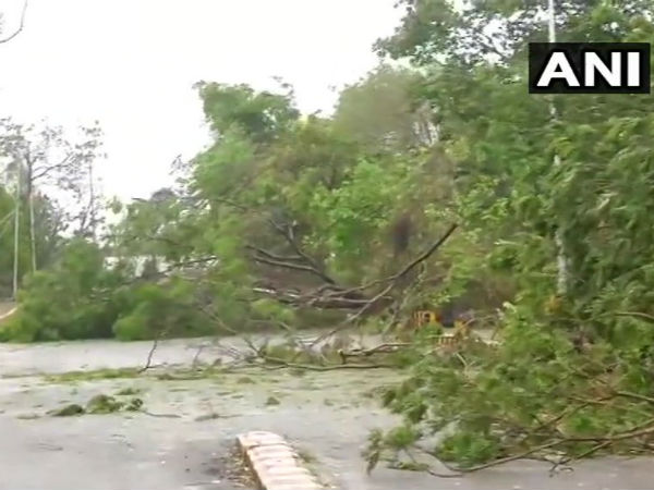 Cyclone Fani claims 5 lives in Odisha