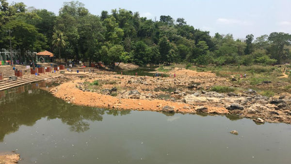 Destruction of forest reason for water shortage : Veerendra Heggade