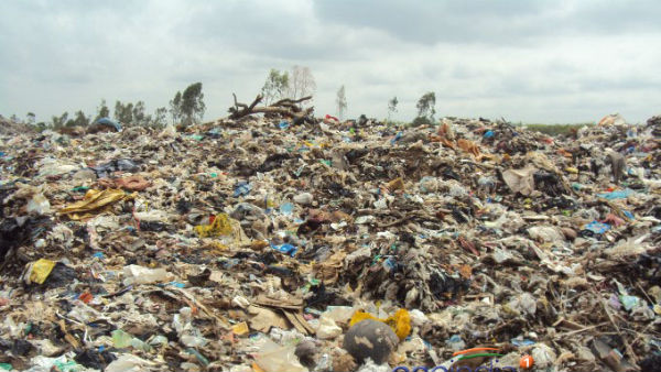 Mysuru City Corporation plans to set up Animal Waste Processing Plant in city