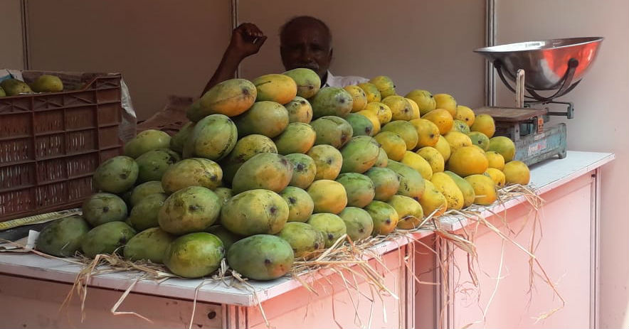 Mango and jackfruit mela started in Mysuru