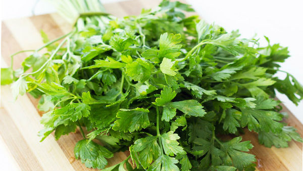 Coriander leaves price hike in mysuru market