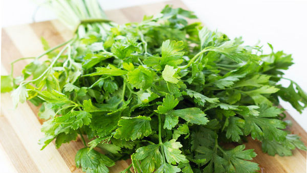 Coriander leaves price increases to 70 rupees