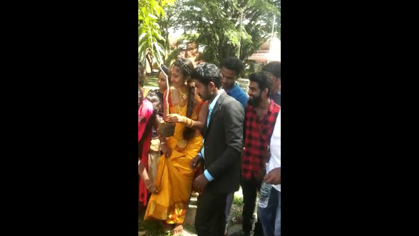 girl and boy got engaged by planting mango in chikkamagaluru