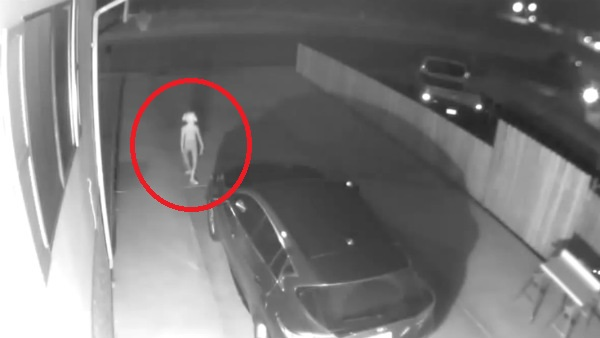 Strange thing caught in security camera; video viral in social media