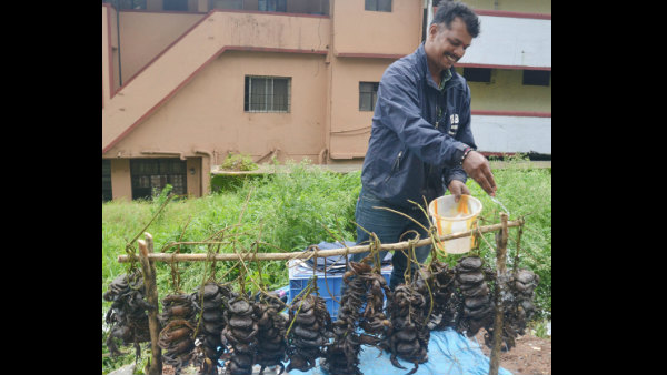 Full demand for Crab and Kanile at Madikeri in monsoon