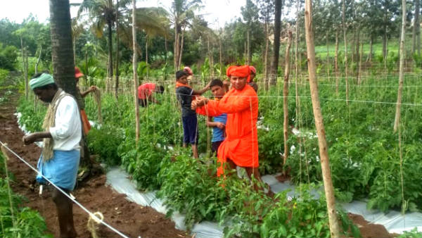 beluru pushpagiri swamiji interests in agriculture activities