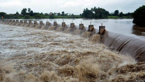 Due to rain in Maharashtra Krishna river inflow increases
