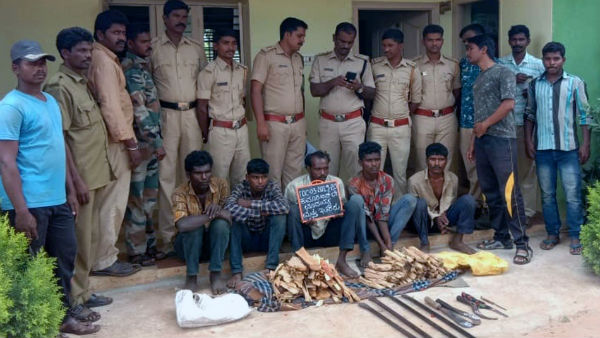 police arrested five while cutting sandalwood trees in muttatti