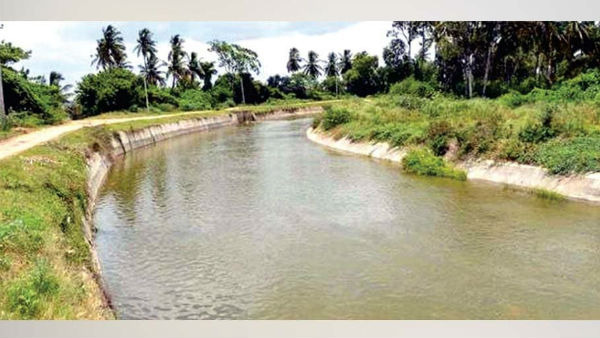Till July 26 mandya farmers will get water from canals