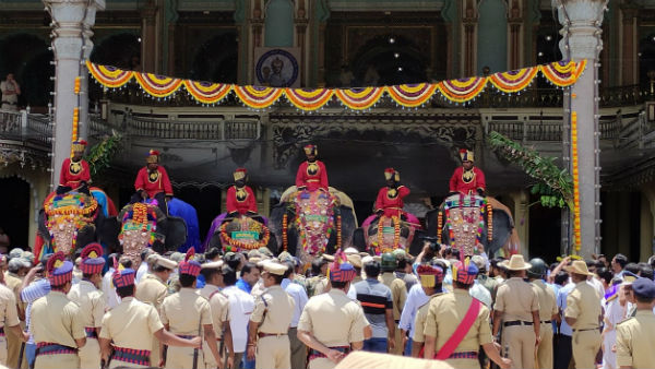 First batch of Dasara elephants welcomed at Mysuru Palace