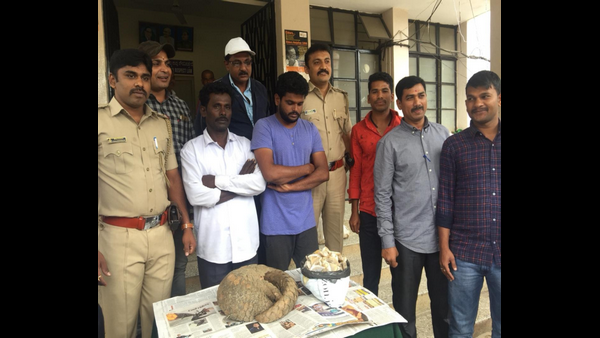 Bengaluru North Police Arrested Two Persons, Seized Pangolin And Their Shells