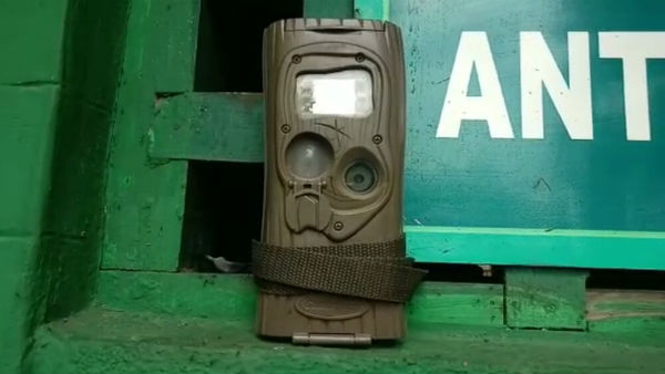 Hightech Surveillance For Tiger Protected Area Of ​​Bandipur