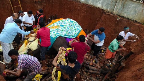 Devotees Outrage Against Elephant Indira Death In Kolluru