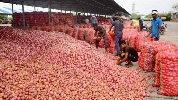Onion Growers Of Karnataka Hope To Good Profits