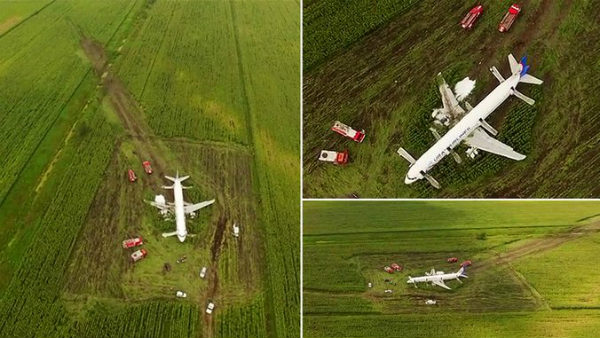 Russian Pilot save 233 lives after lands his plan in Corn field