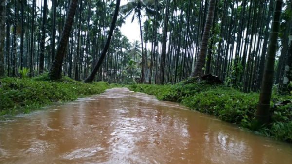 Total Of 8 People Died In Chikkamagaluru Flood