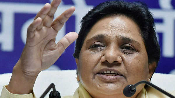 Haryana Assembly Elections: Congress, BSP may join hands