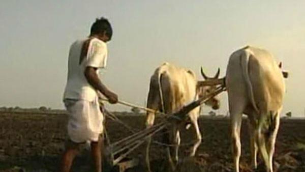 ದೆಹಲಿಯಲ್ಲಿ ರೈತರ ಬೃಹತ್ ಪ್ರತಿಭಟನೆ, 15000  ಅನ್ನದಾತರು ಭಾಗಿ
