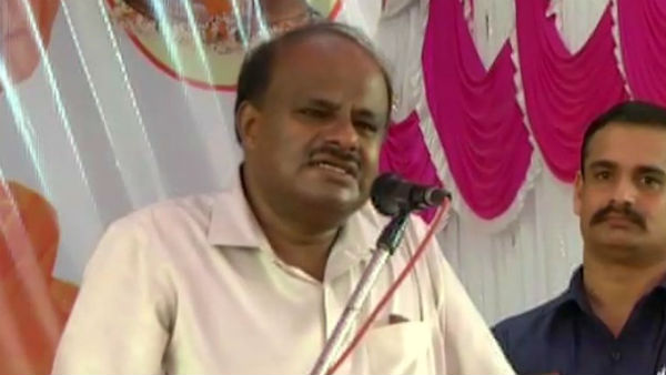 BJP Government In Karnataka Will Collapse Within 4 Months: HDK
