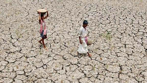 Karnatakas 18 Districts 49 Taluks Are Drought Hit: Government