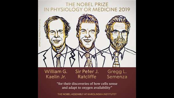 Three Scientists Shared Nobel Prize In Physiology Medicine