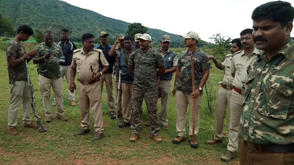 Operation Started By Forest Department To Capture tiger
