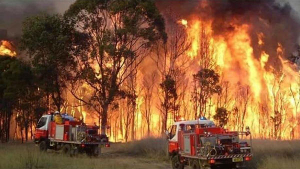 Bushfires In Australia New South Wales Burn Millions Hectare