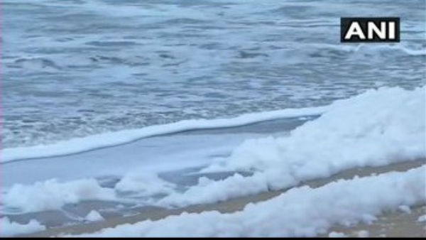 Tamil Nadu: Sea At Marina Beach In Chennai Spills Toxic Foam