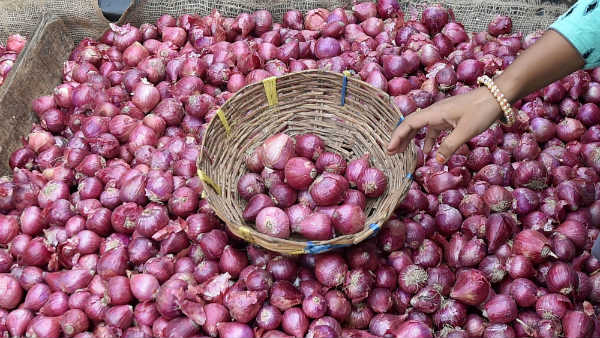 Turkey Onions Came To Hubballi APMC