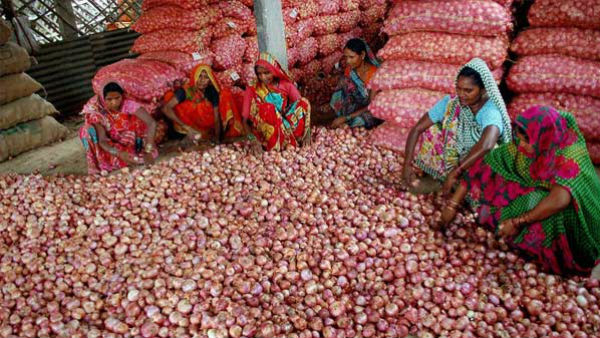 Onion price rises to Rs 11,000 per quintal mark