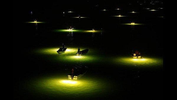 ಮಂಗಳೂರಲ್ಲಿ ಕಾನೂನು ಬಾಹಿರ ಲೈಟ್ ಫಿಶಿಂಗ್; ಕತ್ತಲಲ್ಲಿ ನಾಡದೋಣಿ ಮೀನುಗಾರರು