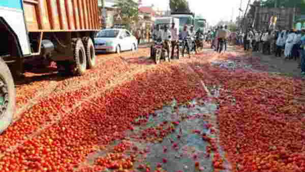 A Farmer Threw Tomatoes On Street In Raichur