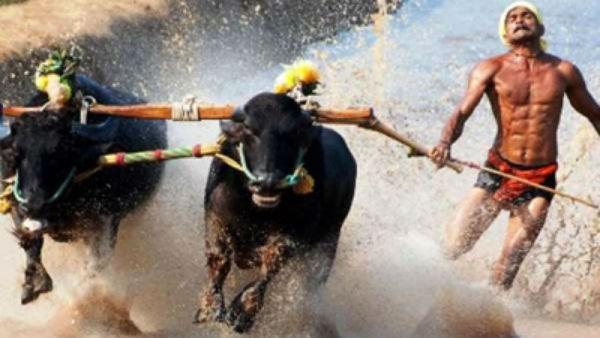 ಟ್ವಿಟ್ಟರಲ್ಲೂ ಕಂಬಳದ ಓಟಗಾರನದ್ದೇ ಸದ್ದು, ಮಹೀಂದ್ರಾ ಮೆಚ್ಚುಗೆ