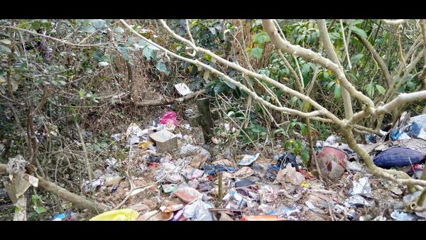 Monuments Found In Garbage In Madikeri