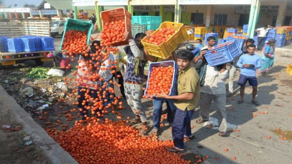 Tomato Price Declined In Mysuru