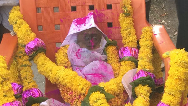 The People Who Funeral The Monkey In Belagavi