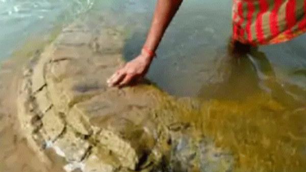 ಒಡಿಶಾದ ಮಹಾನದಿಯೊಳಗೆ ಮುಳುಗಿ ಹೋಗಿದ್ದ 500 ವರ್ಷ ಹಳೆಯ ದೇವಸ್ಥಾನ ಪತ್ತೆ