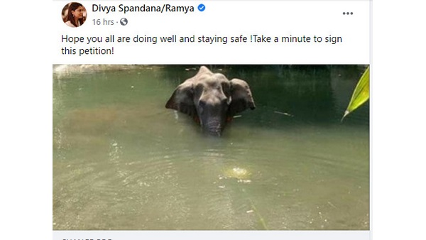 Former MP Ramya alias Divya Spandana Facebook account is activated