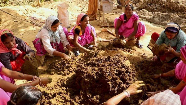 Chhattisgarh: 100 kg cow dung collected under Godhan Nyay Yojna stolen away
