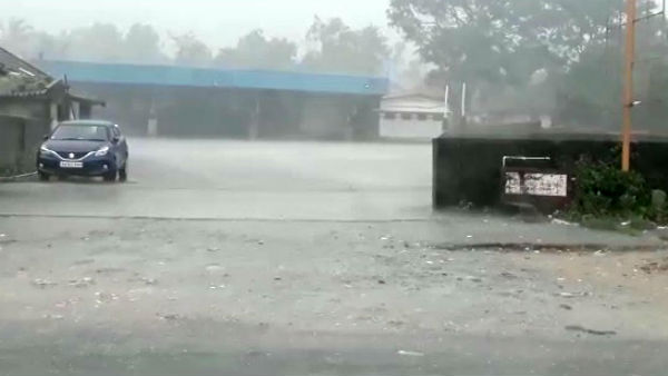 Rain With Heavy Wind All Over Chikkamagaluru Districts
